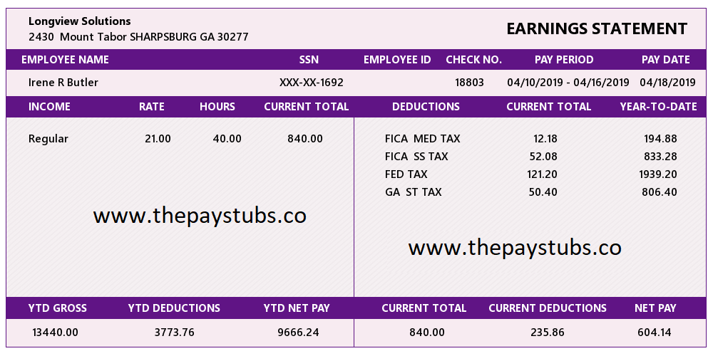 Georgia Regular PayStub Sample